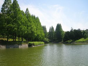 佐竹公園 離婚時の家の名義変更サポートセンター